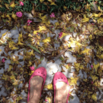 Seasons Change…Eventually
