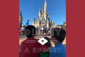 disneybudget