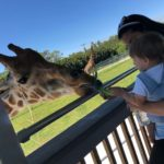 Five Things to do in Palm Beach County with Kids