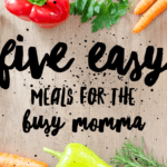 5 Easy Meals for the Busy Momma!