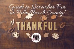 Guide to November Fun in Palm Beach